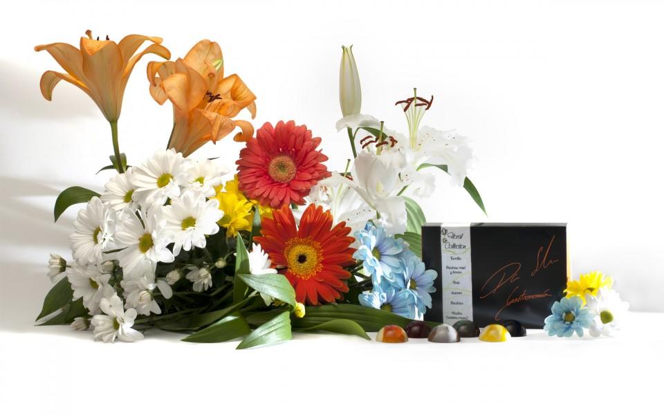 colección floral_ok