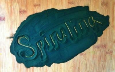 la espirulina